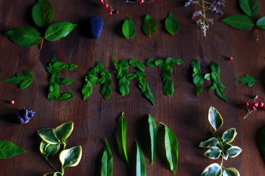 On a dark stained wooden table, a neatly ordered variety of leaves circumscribe the word EARTH spelled out using a combination of green leaves in the centre of the image.