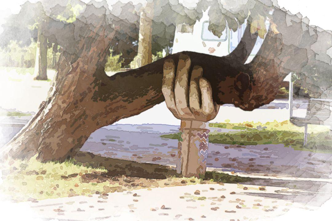 brown tree